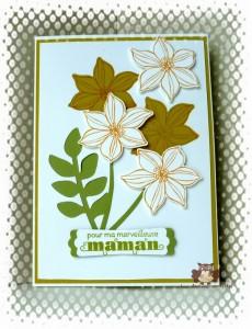 Read more about the article Fête des mamans…