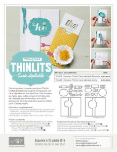 thinlits_flyer_demo_10.13_FR