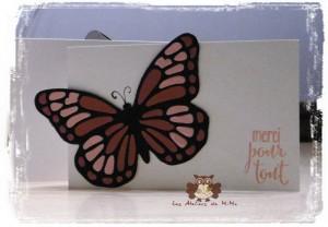 Papillon_e