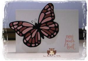 Papillon_i