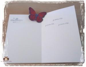 Papillon_a