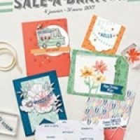 Sale A Bration, et nouveau catalogue Printemps…