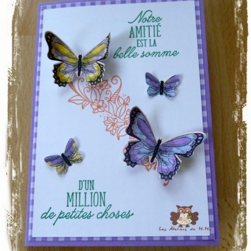 Des papillons…